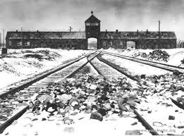 auschwitz - train tracks